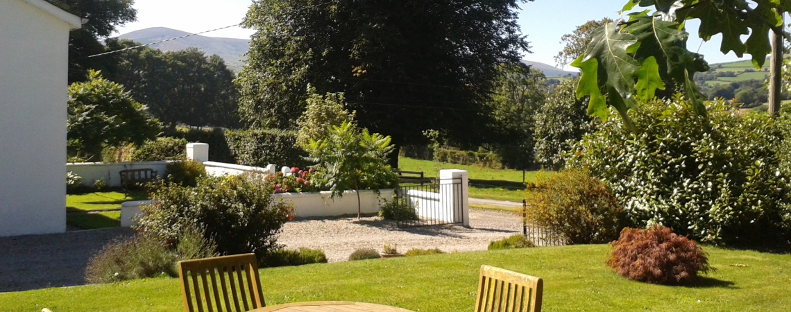 Garden_Towards Mount Leinster