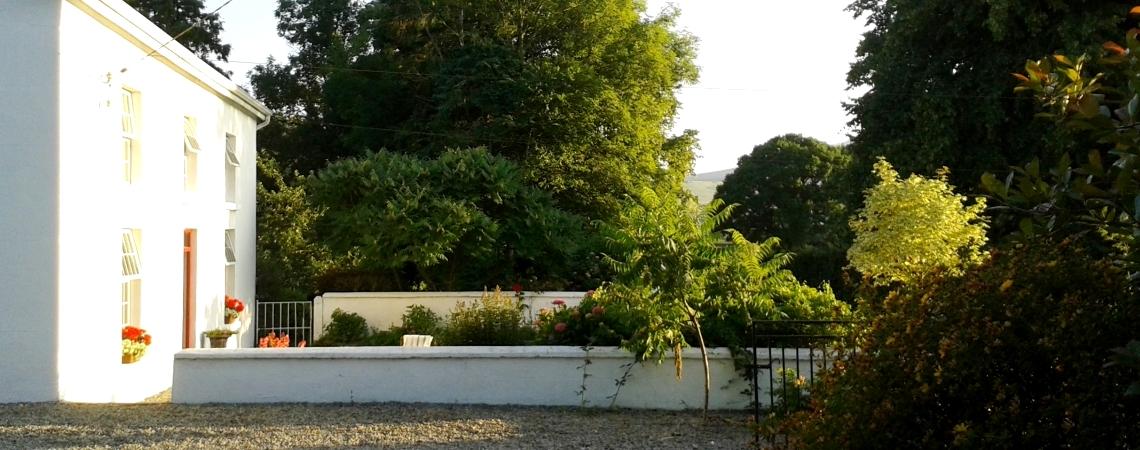 Garden_Front_Evening Sun